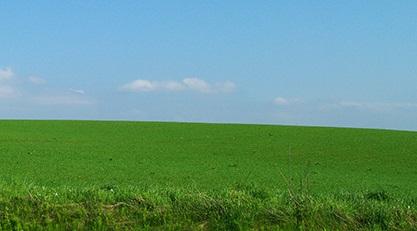 グリーンの大地
